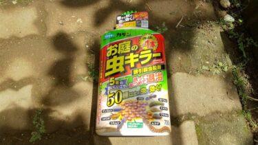 多肉植物の天敵!梅雨時期のナメクジと害虫対策にはこれ!